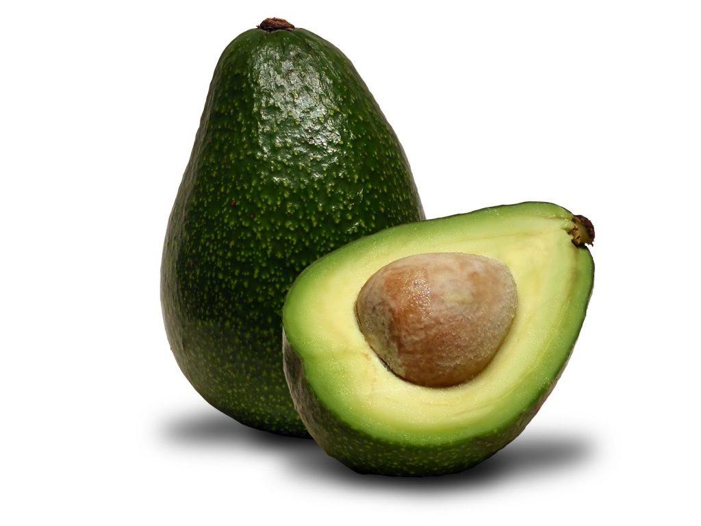 abacate-fruit-brazil